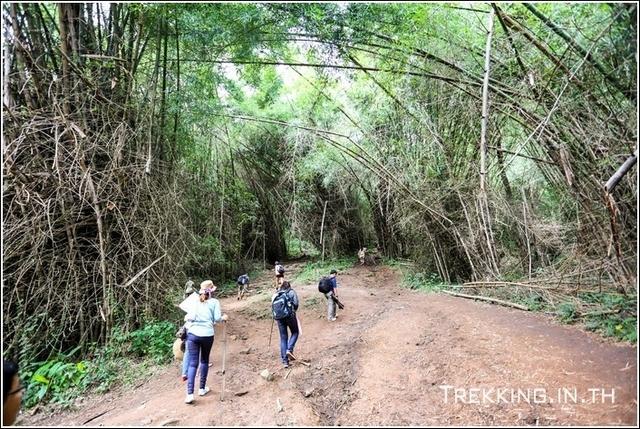 Phukadung-2014-12