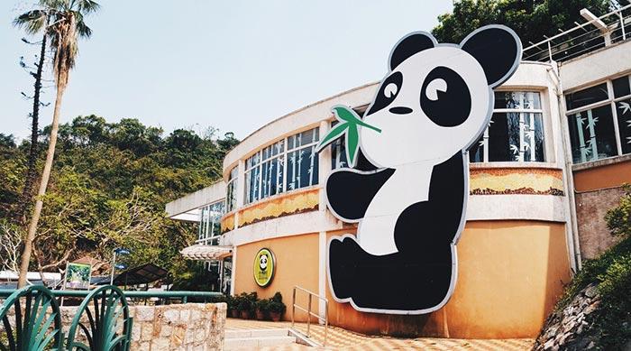 สวนสัตว์แพนด้ายักษ์แห่งมาเก๊า (Macau Giant Panda Pavilion)